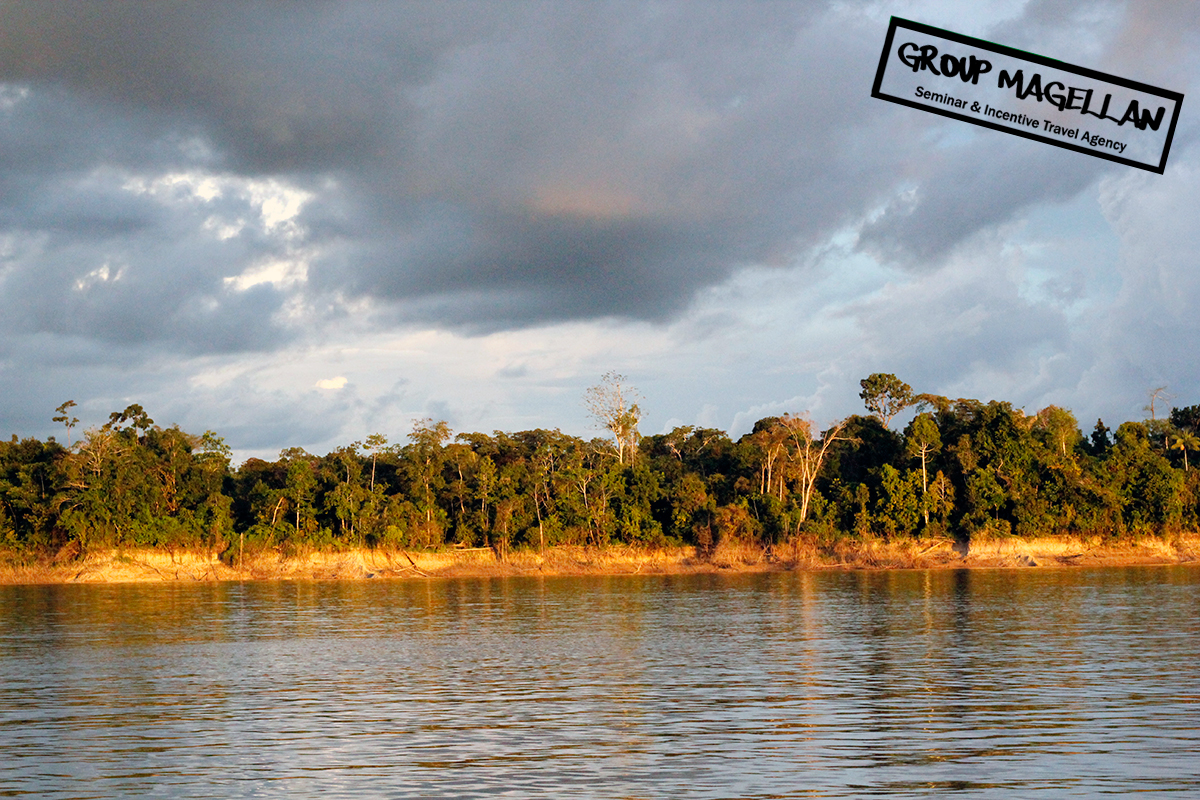 17-amazonie