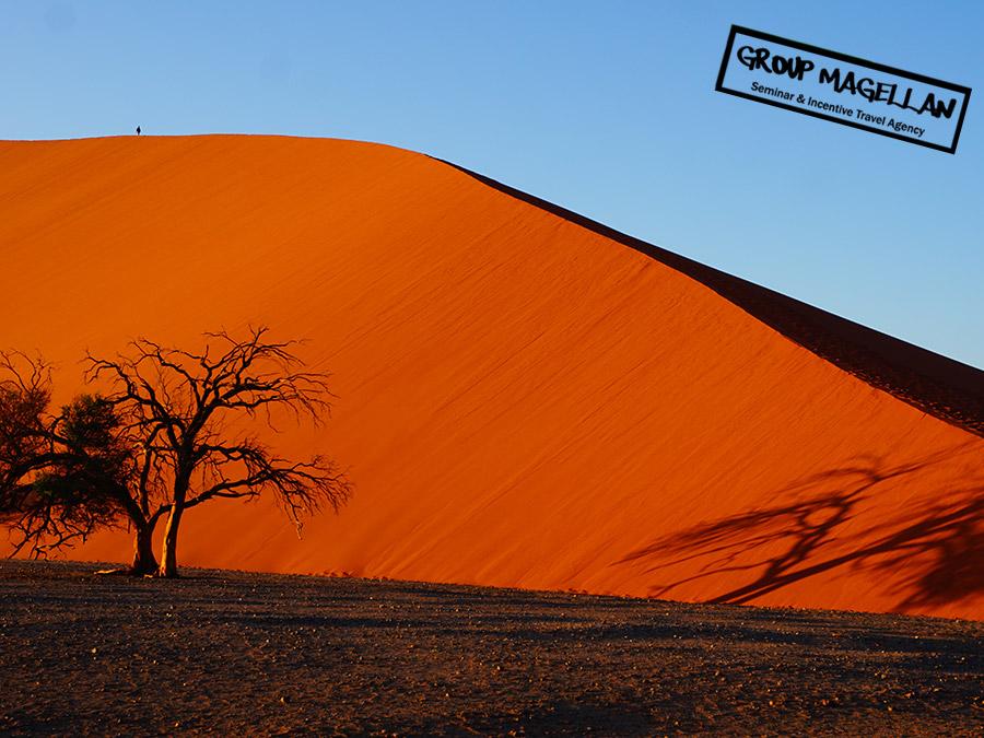 14-voyage-incentive-namibie