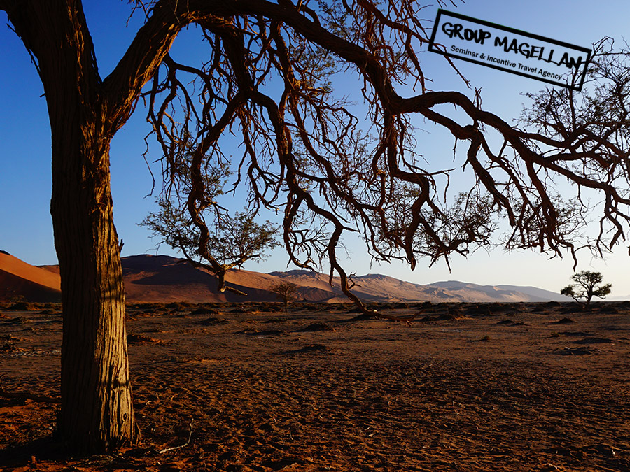15-voyage-incentive-namibie