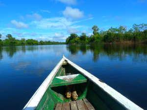 Séminaire et incentive en Amazonie