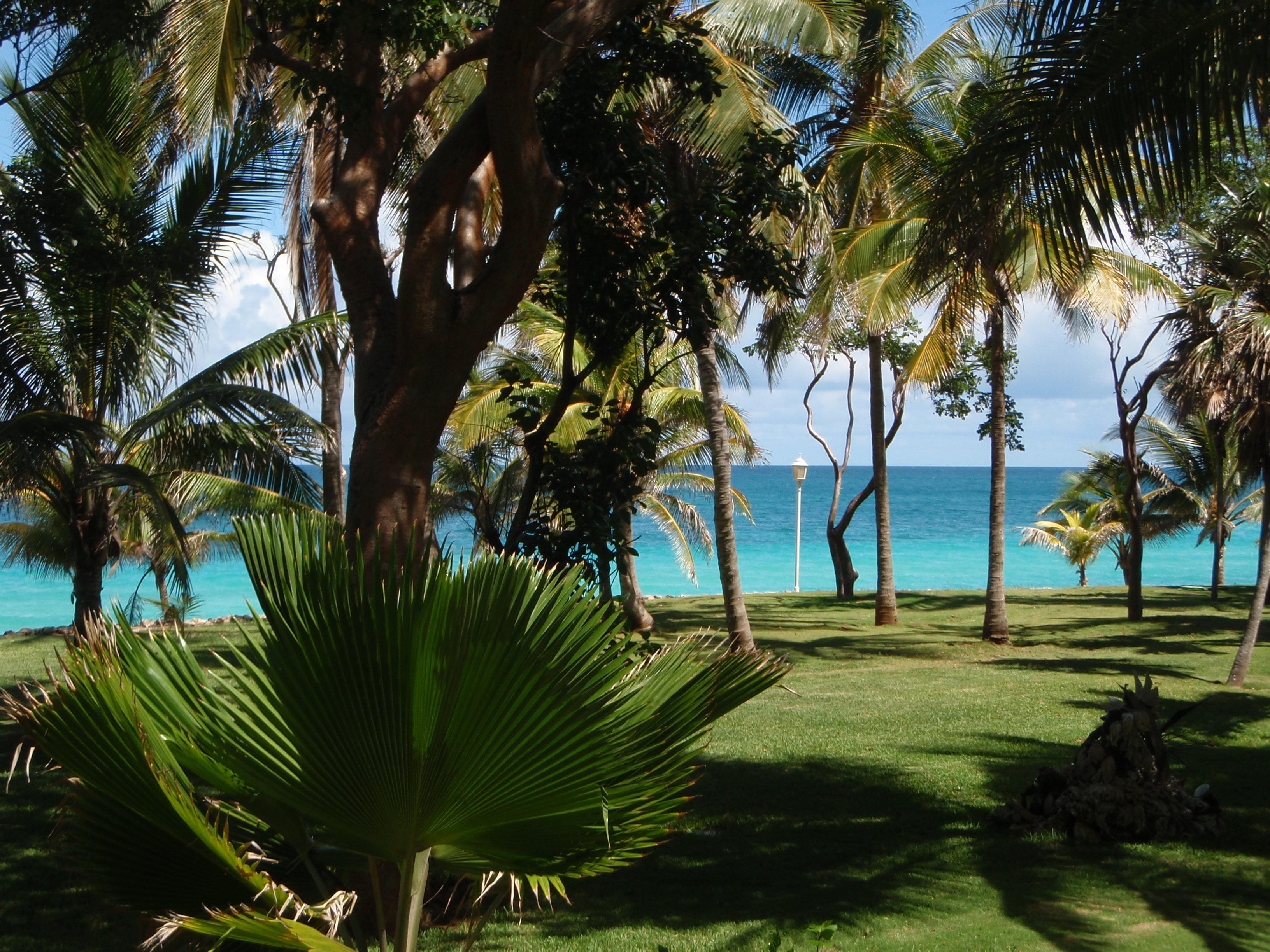 Séminaire et incentive à Cuba
