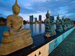Voyage incentive au Sri Lanka