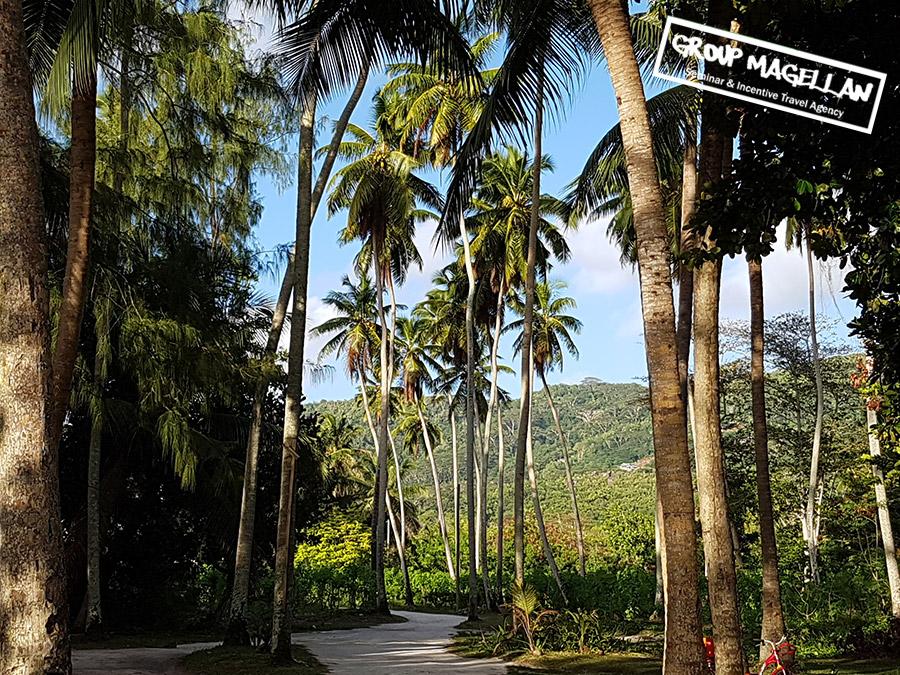 08-voyage-d-affaires-seychelles
