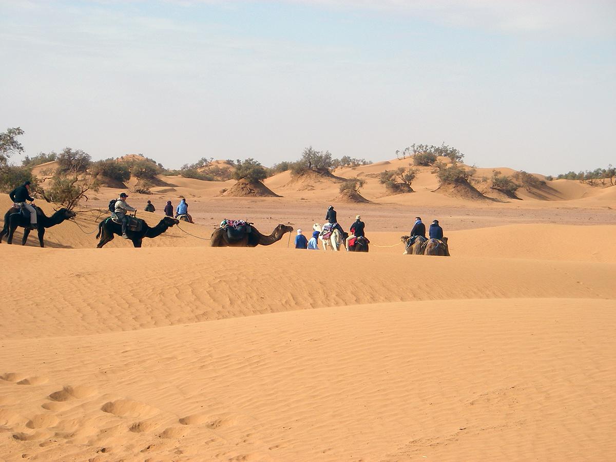 09-team-building-marrakech-maroc