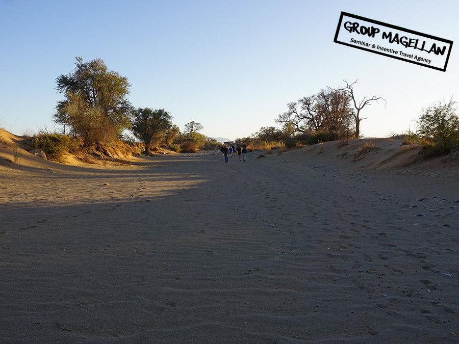 03-voyage-incentive-namibie